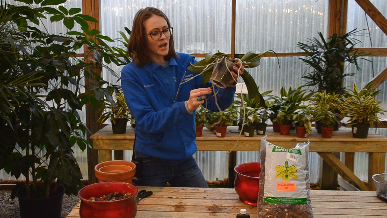Samantha Atwell in greenhouse holding orchid plant